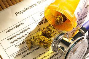 New UBCO study examines pain tolerance among cannabis users
